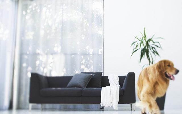家具選びに役立つ「色調」と「イメージ」の関係